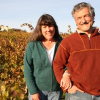 Thumbnail image for Cedarville Vineyard (Fair Play, Sierra Foothills)