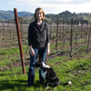 Thumbnail image for Foursight Wines (Anderson Valley, Mendocino County)
