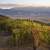 Thumbnail image for Paraiso Vineyards (Santa Lucia Highlands)