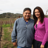 Thumbnail image for Marita's Vineyard (Coombsville, Napa Valley)
